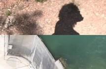 The Way In Between <br/>de Hadil Nazmy, Hanane El Farissi
